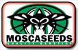 Mosca Tohumlar