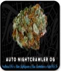 Auto Nightcrawler OG