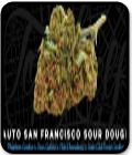 Auto San Francisco Sour Dough