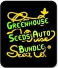 Greenhouse Seeds Auto Bundle