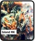 Island MK