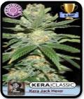 Kera Classic - Jack Herer