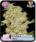 Kera Classic - Kera Bubblegum