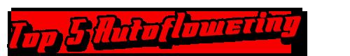 Meest populair Autoflowering